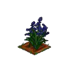 Wither Bunch Bluebell-icon