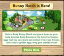 Baby Bunny Hutch