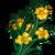 French Tarragon-icon