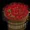 Raspberries Bushel-icon