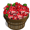 Red Orchid Bushel-icon