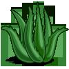 Super Aloe Vera-icon