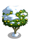 Granny Smith Apple Tree8-icon