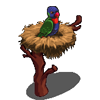 Rainbow Lorikeet-icon