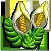 Sheltered Fruit-icon