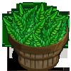 Chicory Bushel-icon