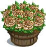 Gilded Carnations Bushel-icon