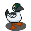 Goldeneye Duck-icon