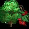 Montmorency Cherry Tree-icon