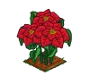 Perfect Poinsettia-icon