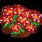 Polka Dot Flowers-icon