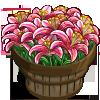 Stargazer Lilies Bushel-icon
