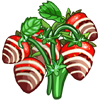 Chocolate Strawberry-icon