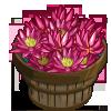 Forbidden Lily Bushel-icon