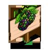 Jungle Blackberry Mastery Sign-icon