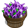 Purple Anthurium Bushel-icon