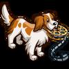 Reel Dog-icon