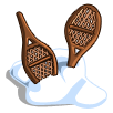 Snow Shoes-icon
