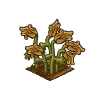 Wither Bunch Golden Poppy-icon
