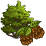 Speckled Alder Tree-icon