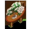 Gardenia Bonsai Mastery Sign-icon