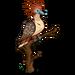 Hoatzin-icon