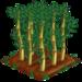Bamboo extra100