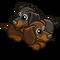 Cuddling Puppies-icon