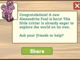 Alexandrite Foal