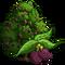 California Laurel Tree-icon