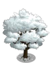 Dogwood Tree (tree)1-icon