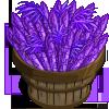 Purple Passion Bushel-icon