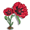 Soho Oriental Poppy-icon