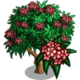 Red Plumeria Tree-icon