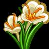 White Saffron-icon