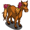 Pink Carnation Pony-icon