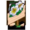 White Hibiscus Mastery Sign-icon