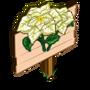 White Poinsettia Mastery Sign-icon