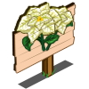 White Poinsettia Mastery Sign-icon