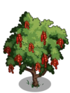 Amherstia Tree2-icon