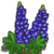 Lupine-icon