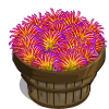 Nile Grass Bushel-icon
