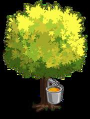 Silver Maple2-icon