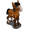 Swiss Warmblood Foal-icon