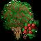 Yaupon Holly Tree-icon