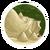Daydream Island Stage 4-icon