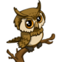 Owl-icon