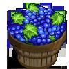 Pinot Noir Grape Bushel-icon