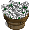 White Roses Bushel-icon