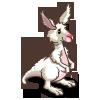 White Wallaroo-icon
